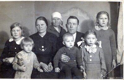 Vīguļu ģimene