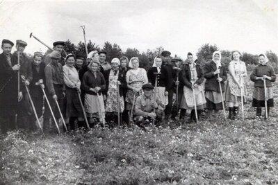 Biešu ravētāji Nīkrāces pagasta ''Rogās''
