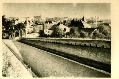 Alba Iulia [material iconografic] : Intrarea în cetate