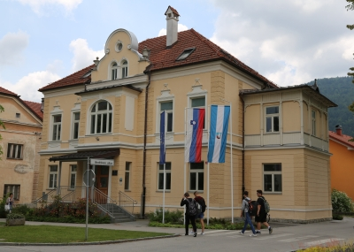 Vila Rothel Schleimer, Kočevje