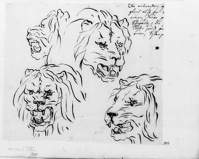 Lejonhuvuden