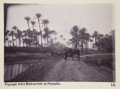 Fotografi. Landskap mellan Badrashin och Memfis. Egypten.