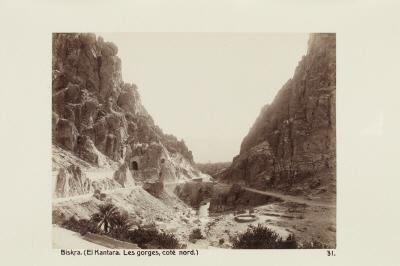 Fotografi. Norrsidan av ravinen i El Kantara. Biskra, Algeriet.