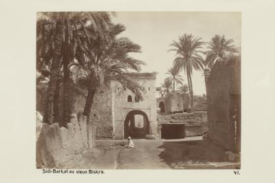 Fotografi. Sidi-Barkat i gamla Biskra, Algeriet.