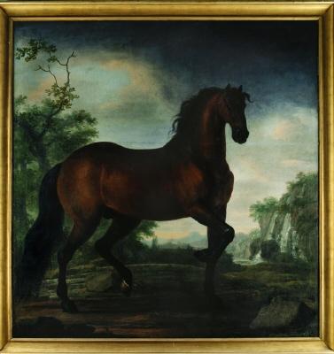 Hästporträtt. Olja på duk.