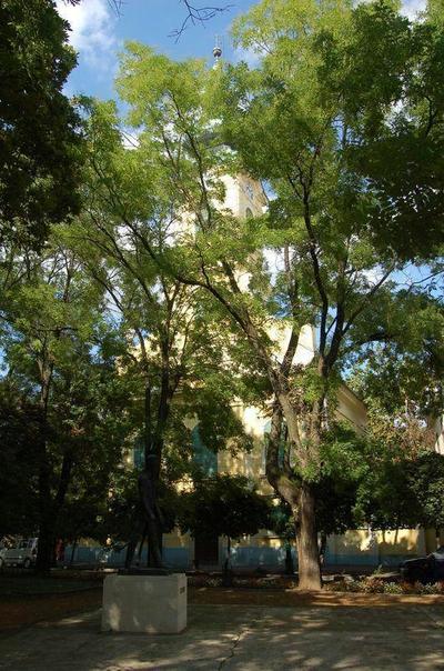 Gyula, Református templom