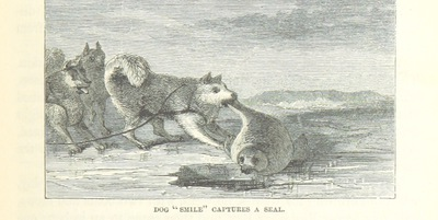 Image from page 341 of [Life with the Esquimaux: the narrative of Captain C. F. H. ... from the 29th May, 1860, to the 13th Sept., 1862. With ... the discovery of actual relics of Martin Frobisher ... and deductions in favour of yet discovering some of the survivors of Sir J. Franklin's Expedition. With maps and ... illustrations.]