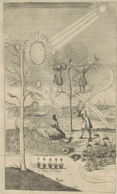 Image from page 8 of A Collection of State Flower[s]. [A satire in verse. With an engraved frontispiece.]