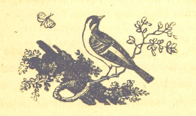 Image from page 339 of Essays on the Progress of the Vital Principle from the Vegetable to the Animal Kingdoms and the Soul of Man, introductory to contemplations on Deity. MS. notes [by the author]