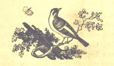 Image from page 117 of Essays on the Progress of the Vital Principle from the Vegetable to the Animal Kingdoms and the Soul of Man, introductory to contemplations on Deity. MS. notes [by the author]