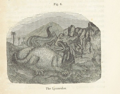 Image from page 37 of Relics from the wreck of a former world; or Splinters gathered on the shores of a turbulent Planet; proving the vast antiquity, and the existence of animal life before the appearance of Man. With an appendix on the scenery in a patch of infinite space. To which is added, accounts of the most wonderful bodies that have fallen from Heaven