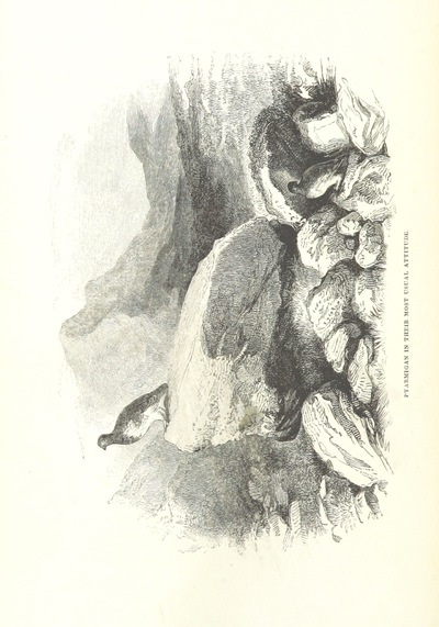 Image from page 134 of The Moor and the Loch: containing practical hints on most of the Highland sports, and notices of the habits of the different creatures of game and prey in the mountainous districts of Scotland; with an essay on loch-fishing. [With plates.]