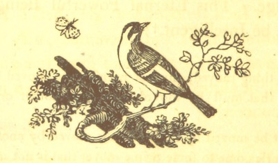 Image from page 378 of Essays on the Progress of the Vital Principle from the Vegetable to the Animal Kingdoms and the Soul of Man, introductory to contemplations on Deity. MS. notes [by the author]