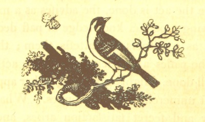 Image from page 260 of Essays on the Progress of the Vital Principle from the Vegetable to the Animal Kingdoms and the Soul of Man, introductory to contemplations on Deity. MS. notes [by the author]
