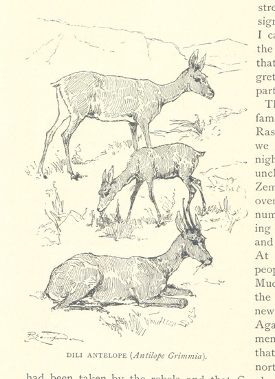Image from page 308 of Travels in Africa during the years 1875-1878 (1879-1883-1882-1886) ... Translated from the German by A. H. Keane ... Illustrated