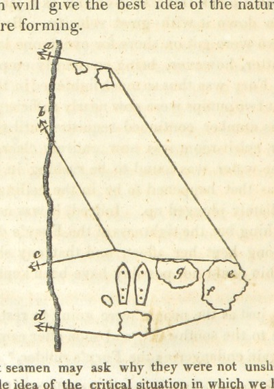 Image from page 122 of [Journal of a Third Voyage for the discovery of a North-West Passage from the Atlantic to the Pacific; performed in the years 1824, 25, in His Majesty's ships Hecla and Fury, under the orders of ... W. E. P. ... Illustrated by plates and charts. (Appendix. Zoology ... By Lieut. J. C. Ross. Botanical Appendix by Professor Hooker. Notes on ... Geology ... By Professor Jameson.)]