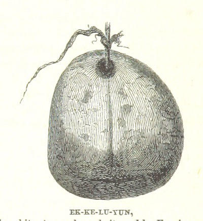 Image from page 154 of [Life with the Esquimaux: the narrative of Captain C. F. H. ... from the 29th May, 1860, to the 13th Sept., 1862. With ... the discovery of actual relics of Martin Frobisher ... and deductions in favour of yet discovering some of the survivors of Sir J. Franklin's Expedition. With maps and ... illustrations.]