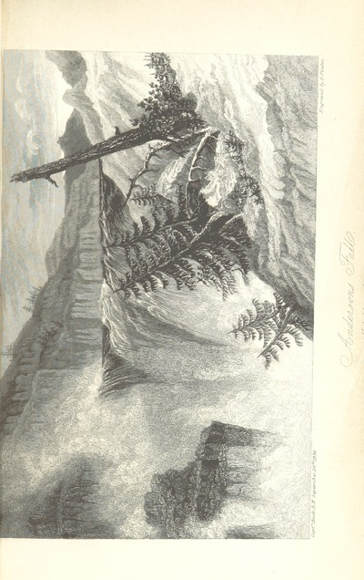 Image from page 491 of Narrative of the Arctic Land Expedition to the mouth of the Great Fish River, and along the shores of the Arctic Ocean, in the years 1833, 1834, and 1835 ... Illustrated by a map and plates