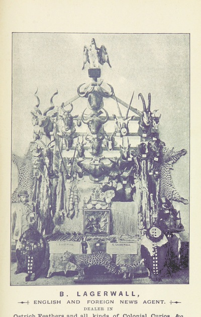 Image from page 113 of The Guide to Port Elizabeth. Illustrated