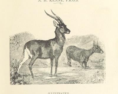 Image from page 9 of Travels in Africa during the years 1875-1878 (1879-1883-1882-1886) ... Translated from the German by A. H. Keane ... Illustrated