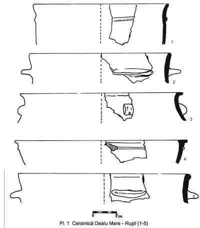 Situl arheologic de la Dealu Mare - Ruști