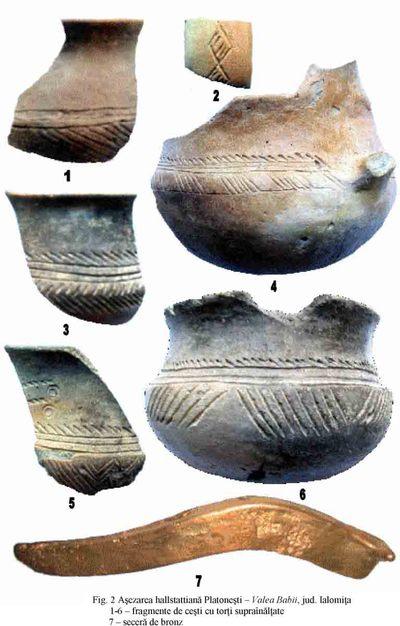 Situl arheologic hallstatian de la Platonești - Platoul Hagieni