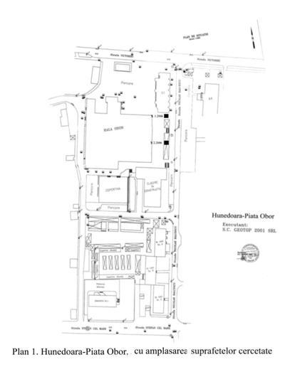Așezarea Vinca de la Hunedoara