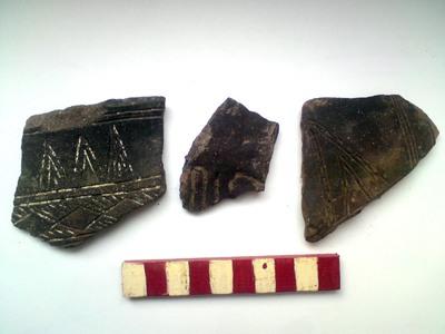 Așezarea de epoca bronzului de la Pârâu Boia-Scutaru Mic