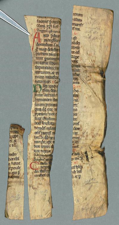 F.m.III.12 (Breviary)