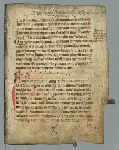 F.m.III.135 (Psalter)