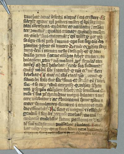 F.m.III.127 (Breviary)