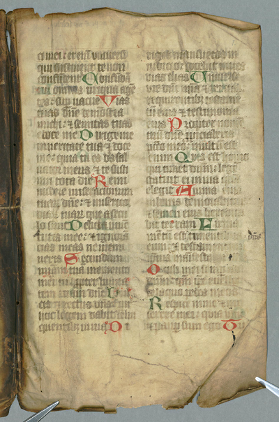 F.m.III.143 (Psalter)