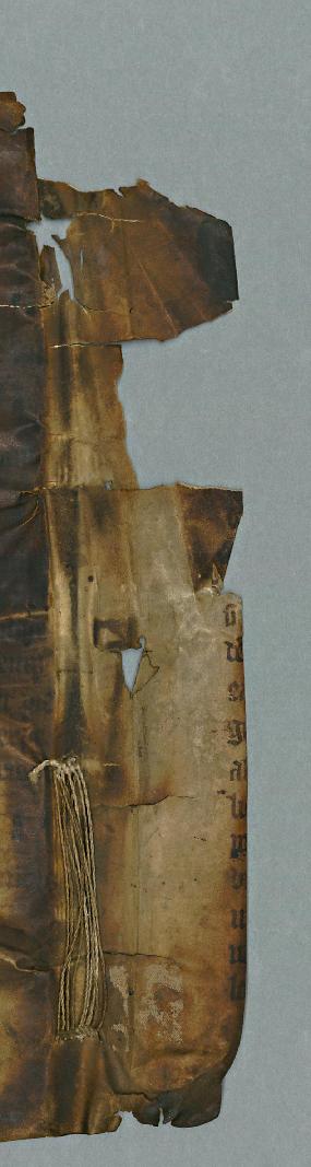 F.m.III.165 (Breviary)