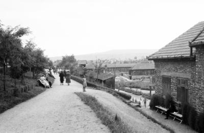 Someşeni (cartier al municipiului Cluj-Napoca)
