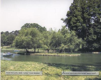 Insula mică - la 100 de ani