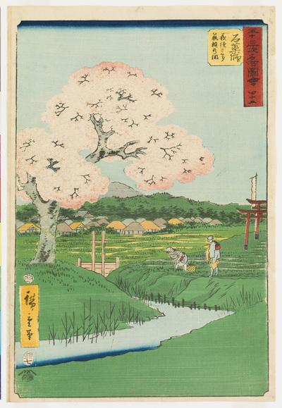 Ishiyakushi Yoshitsune sakura Noriyori no hokora