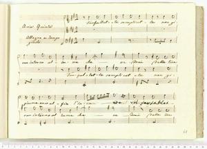 Farfalletta semplicetta (Aria Quinta / Allegro a tempo / giusto)
