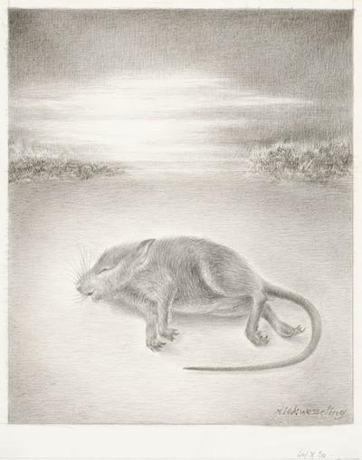 Een tekening van een dood muisje, 1989.