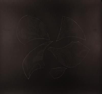 Een fotogram van Stephanie Delprat geinspireerd op een gedicnht van Martinus Nijhoff getiteld 'Novalis'.