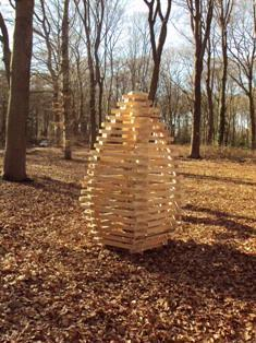 De Stichting Kunst in Putten (SKIP) organiseerde een LAND ART project in het Puttense buitengebied. Deze dennenappel herbergde een klein boomje. Uit zijn natuurlijke habitat gehaald, kon het door de aanhoudende droogte niet overleven.