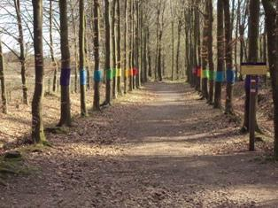 De Stichting Kunst in Putten (SKIP) organiseerde in 2011 een LAND ART project in het Puttense buitengebied. Het oude lied van de breiende herder 'op de grote stille heide' bracht de maaksters op het idee van de gebreide 'Boomjassen'. De regenboogkleuren symboliseren de relatie met dit natuurverschijnsel, dat op deze grote vlakte vaak goed te zien moet zijn.