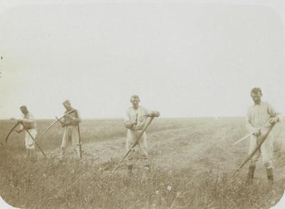 Scherpen van de zeis, 1914-1934