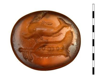 Gem, een gesneden steen van karneool uit de Romeinse Republikeinse periode (Campaans/Hellenistisch-Republikeinse stijl). De steen die bedoeld is voor een zegelring, heeft een afbeelding van een dolfijn, zwemmend naar links met daaronder een scheepsroer.