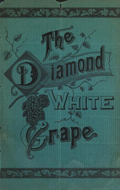 [Diamond White Grape Co. materials]