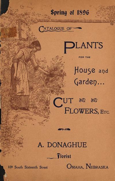 [A. Donaghue materials]