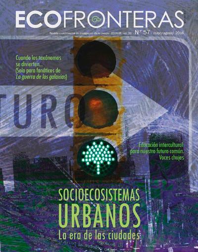 ECOfronteras San Cristóbal Casas, Chis.