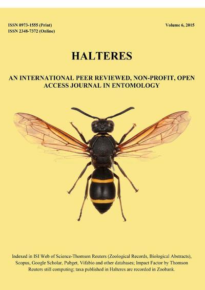 Halteres.