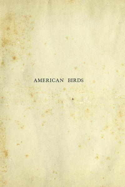 American birds, studied and photographed from life, by William Lovell Finley; illustrated from photographs by Herman T. Bohlman and the author.