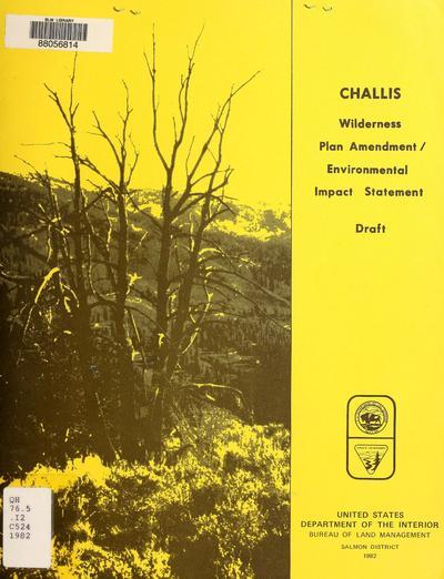 Challis, wilderness plan amendment/environmental impact statement.