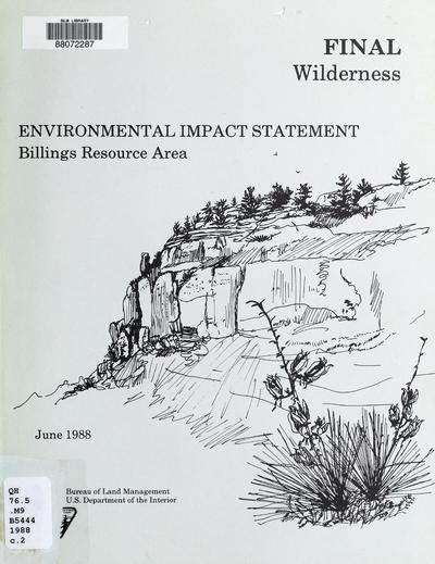 Wilderness environmental impact statement for the Billings Resource Area, Billings, Montana : final report